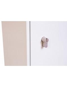 armoire-forte-Armoire à clés Phoenix Safe...